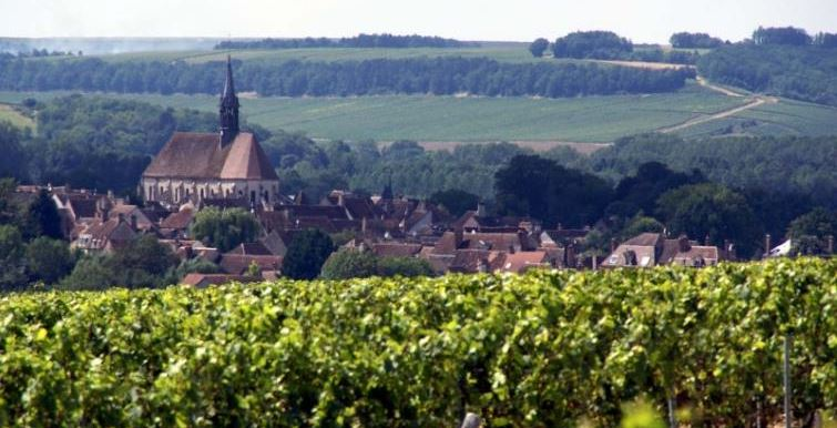view of chablis from grand cru vineyard les clos