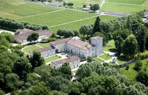 winemaking in d'arenberg