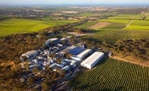 d'arenberg vineyards in mclaren vale