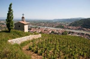 view from hermitage hill, northern rhone