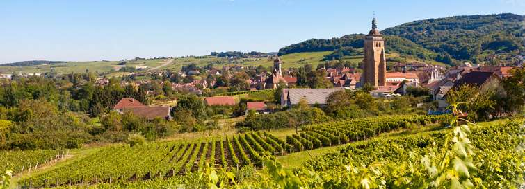 village view from a vineyard in the Jura