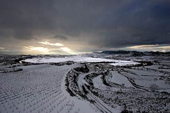 lopez de heredia vineyards covered in winter snow