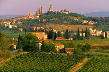 view of vineyards and san gimignano in tuscany