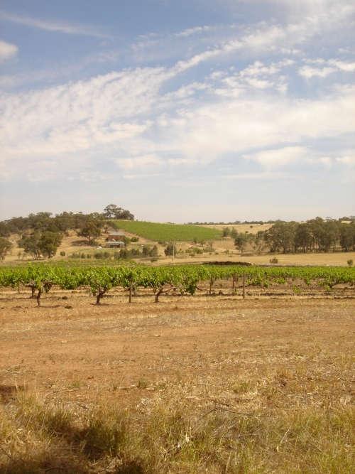 Torbreck wines barossa valley